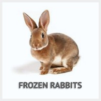 Frozen Rabbits